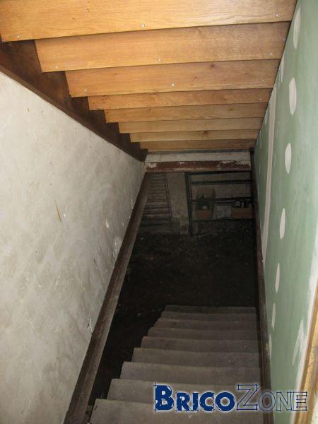 Projection pur cave quid verso escalier - Isoler une porte de cave ...