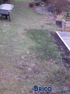 Faire pelouse début mai?