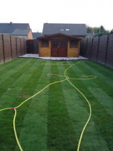 Nouvelle pelouse, jauni et sèche après 2 mois, que faire