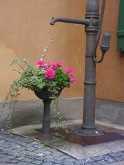 Achat pompe eau de pluie