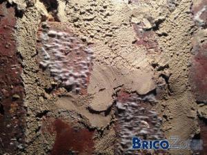 Champignons dans grenier après isolation