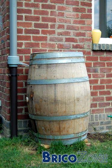 Champignon dans mon r servoir d 39 eau de pluie - Reservoir eau de pluie ...