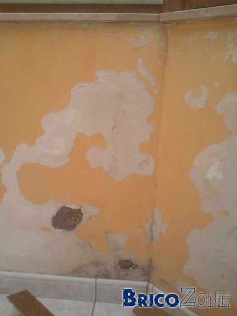 Prob avec mur humide que faire comme finition dans mon cas - Mur humide que faire ...